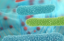 Water Legionella
