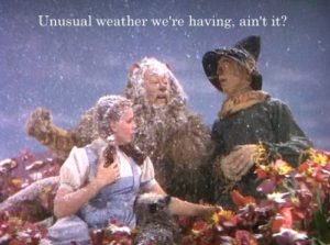 The Wizard of Oz, and Asbestos?