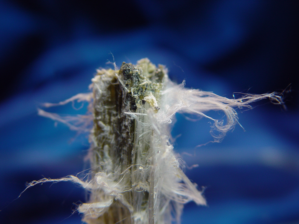 Asbestos Canadian Chrysotile