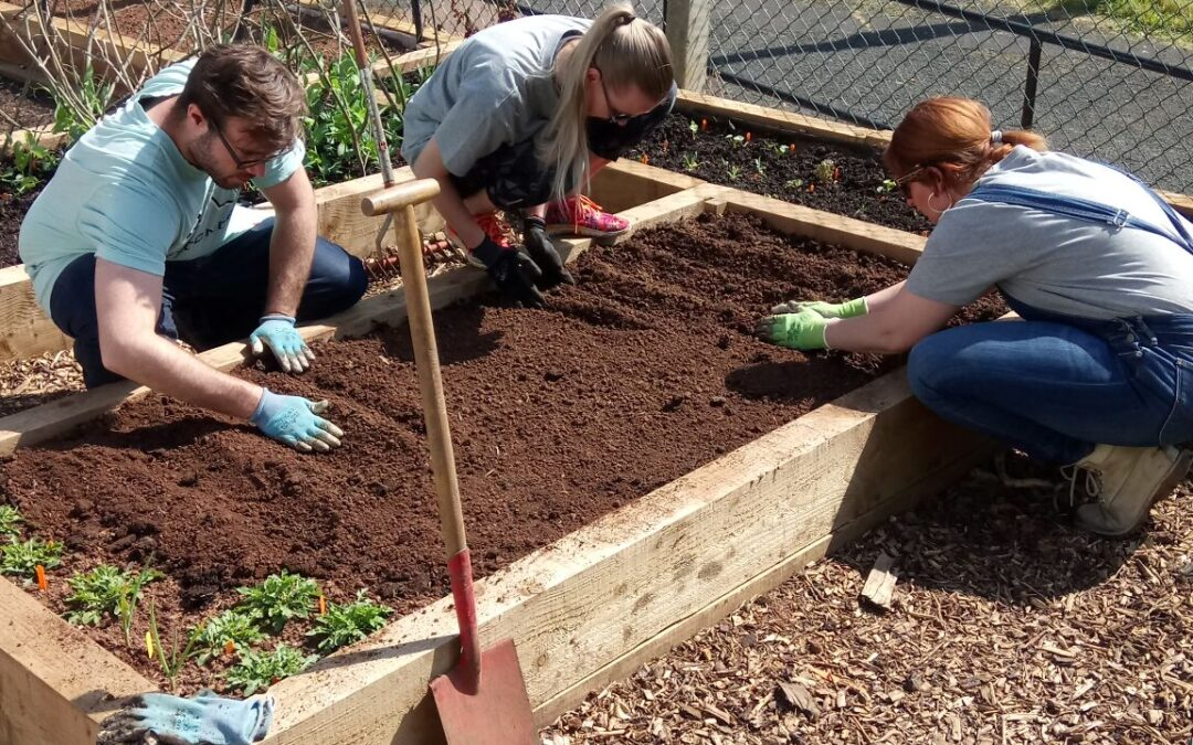 Buzz Lockleaze Landscaping and Gardening Project – Community Action Day
